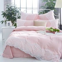 Blush Pink Bohemian Tribal Pattern Applique Vintage Victorian Lace Sophisticated Elegant Romantic Girls Full, Queen Size Bedding Sets